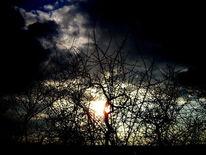 Winter, Farben, Wolken, Licht