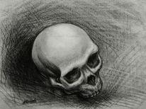Schädel, Vergänglichkeit, Memento mori, Skelett