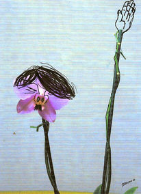 Grafik, Surreal, Orchidee, Wilde