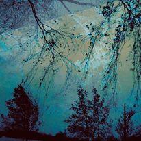 Zweig, Windbewegung, Baum, Digitale kunst