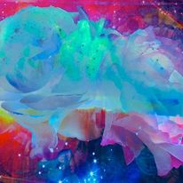 Rosenblüten, Leuchten, Farben, Digitale kunst