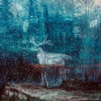 Winter, Schnee, Wald, Erscheinung