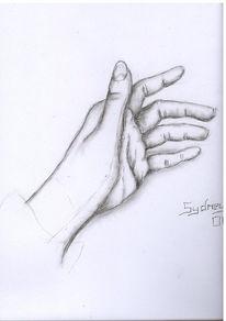 Kohlezeichnung, Zeichnung, Studie, Skizze