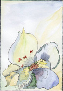 Stillleben, Malerei, Blüte