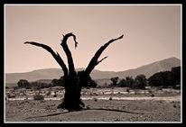 Weite, Fotografie, Namibia, Stille