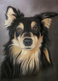Pastellmalerei, Hund, Hundeportrait, Mischtechnik
