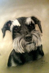 Tiere, Pastellmalerei, Malerei, Hund