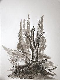 Knorzelbaum, Käfer, Tusche, Zeichnung