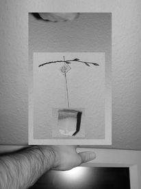 Tee, Digital, Digitale kunst,
