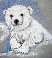 Baby, Tiere, Eisbär, Bär