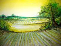 Baum, Acker, Landschaft, Wiese