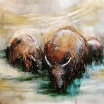 Büffel, Tiere, Bison, Wild