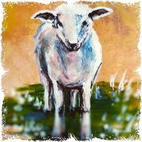 Tiere, Lamm, Schaf, Malerei