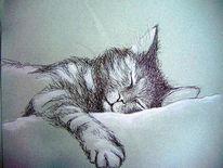 Tiere, Zeichnung, Katze, Malerei