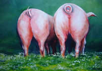 Tiere, Bauernhof, Schwein, Landschaft
