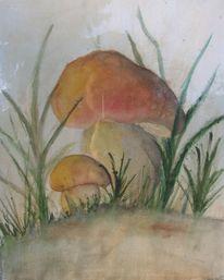 Zeichnung, Aquarellmalerei, Pilze, Zeichnungen