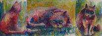 Aquarellmalerei, Katze, Aquarell, Achtung