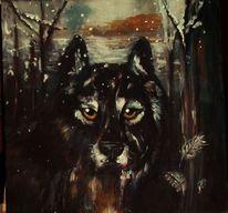 Tier, Wolf, Dunkel, Winter