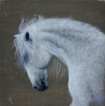 Traum, Realismus, Wildlife realistisch, Malerei