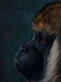 Affe, Augen, Realismus, Acrylmalerei
