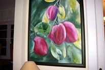 Pflaume, Violett, Grün, Früchte
