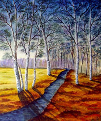 Birken, Wald, Bach, Landschaft