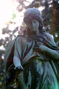 Friedhof, Berlin, Fotografie, Eichen