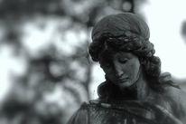 Engel, Eichen, Fotografie, Friedhof