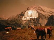 Alpen, Silvester, Berner, Kuh