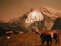 Kuh, Oberland, Alm, Ufo