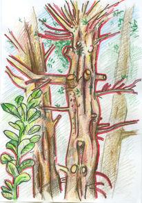 Kontur, Blätter, Nadelbäume, Gold