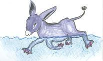 Grau, Blau, Schwimmflossen, Esel