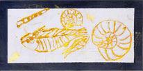Acrylmalerei, Ammonit, Skizze, Zeichnung