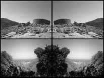 Fotografie, Schwarz weiß, Konzept, Sommer