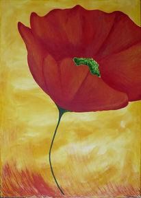 Stillleben, Acrylmalerei, Blüte, Mohn