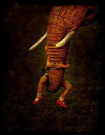 Elefant, Kind, Fotografie, Sport