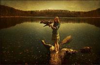 Adler, Wasser, Ruhig, Landschaft