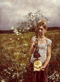 Wiese, Waage, Blumen, Sommer