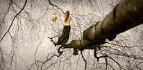 Frau, Pfad, Baum, Gehen