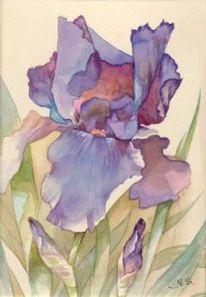 Lila, Stillleben, Blumen, Malerei