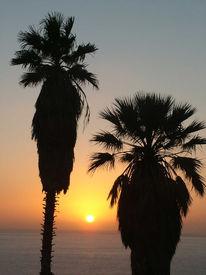 Sonne, Gold, Teneriffa, Sonnenuntergang