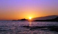 Palmen, Fotografie, Sonne, Spanien