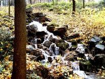 Gartenkunst, Landschaft, Wasserfall, Fotografie