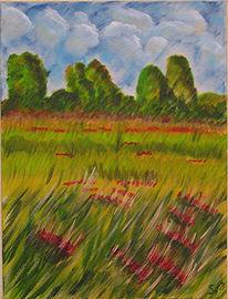 Wolken, Mohnblumen, Rot, Landschaft