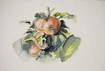 Garten, Apfel, Aquarell,