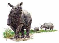 Nashorn, Figural, Malerei, Tiere