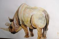 Tiere, Nashorn, Zoo, Aquarell