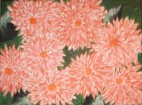 Blumen, Pink, Rose, Pflanzen