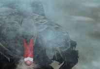 Nebel, Schwarzer schwan, Rot, Digitale kunst