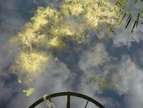 Herbst, Wolken, Spiegelung, Vergänglichkeit